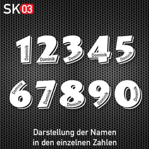 Startnummern Aufkleber für die Rennstrecke mit Fahrername